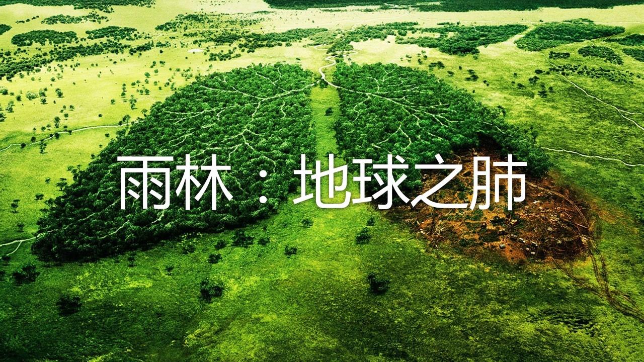 亚马孙热带雨林_森林的开发与保护——以亚马孙热带雨林为例/人教/2019@爱弄PPT的 ...